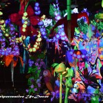 Decoracion para eventos Discotecas festivales El bosque encantado