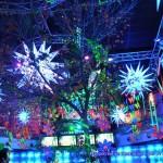 El bosque encantado Decoración eventos Maripocreative Uv Decor, Decoración discotecas y tematicas