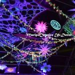 Decoracion el bosque encantado Festivales Maripocreative (3)